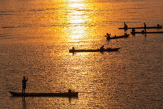 Many Fisherman paddling a Rowboats for fishing when sunset, Silh Stock Photos