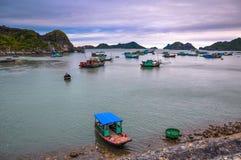 Many fishing boats anchored near the island of Cat Ba Stock Photo