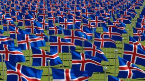 Many flags of Iceland in green field stock illustration