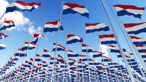 Many flags of Netherlands on flagpoles against blue sky. Royalty Free Stock Photo