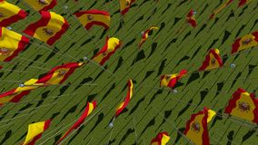Many flags of Spain view from above in green field Royalty Free Stock Images