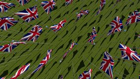 Many flags of the United Kingdom waving in green field. In sunny day. Three dimensional rendering 3D illustration. View from above Royalty Free Stock Image