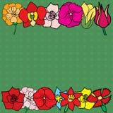 Many flowers Stock Photo
