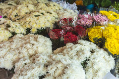 Many flowers many color in flowers markets Stock Photography
