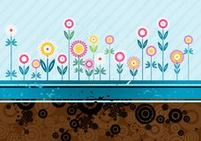 Many flowers,vector Royalty Free Stock Image
