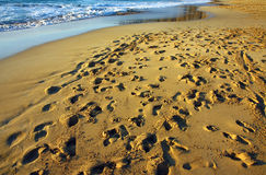 Many footprints on the beach Royalty Free Stock Photos