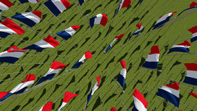 Many France Flags on flagpoles in green field. Royalty Free Stock Photos