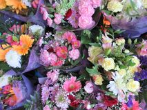 Many fresh attractive colorful flower bouquets at the flower shop. In town, Canada stock photo