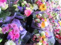 Many fresh attractive colorful flower bouquets at the flower shop. In town, Canada royalty free stock image