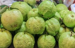 Fresh guava fruit. Many fresh guava fruit with selective for sale Royalty Free Stock Image