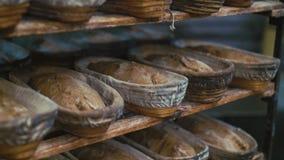 Many fresh loafs of rye bread 4K stock footage