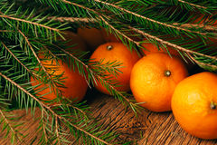 Many fresh mandarins and branches of  Christmas tree on a wooden background Stock Images