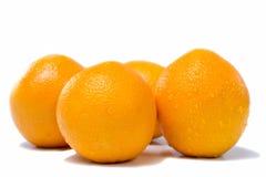 Many fresh orange fruits Stock Photos