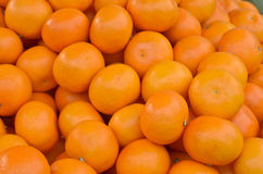 Many fresh oranges Royalty Free Stock Photo