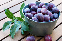 Many fresh plums  in bowl on wooden background Stock Photography