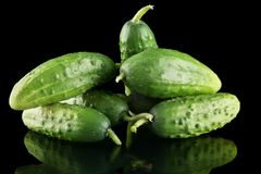 Many fresh raw cucumbers isolated on black Royalty Free Stock Images