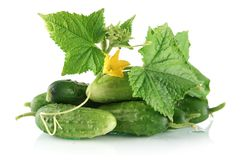 Many Fresh Raw Cucumbers With Flower Isolated On White Stock Photo