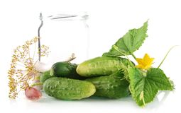 Many Fresh Raw Cucumbers With Jar Isolated On White Royalty Free Stock Image