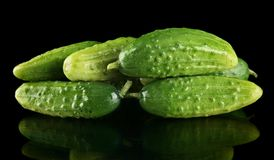 Many fresh raw gherkins isolated on black Stock Images