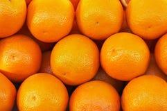 Many fresh raw orange Stock Images