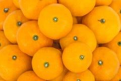 Many fresh raw orange close up. Many fresh raw orange closeup Stock Photography