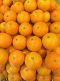 Many fresh raw orange. Closeup of tasty spanish oranges freshly collected Stock Photos