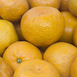 Many fresh raw orange Royalty Free Stock Images
