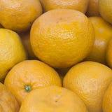 Many fresh raw orange. In the market Royalty Free Stock Images