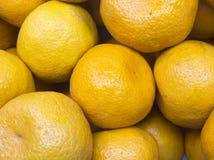 Many fresh raw orange. Overlapping Royalty Free Stock Photo