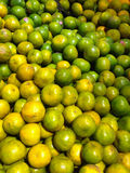 Many fresh raw orange in retail shopping. For sell Royalty Free Stock Photo