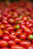 Many fresh red cherry tomatoes. Selective focus. Delicious raw healthy food background. Vegetable market in Bangkok. Many fresh red cherry tomatoes. Delicious Royalty Free Stock Image