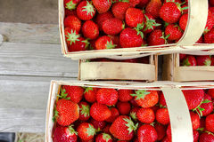 Many fresh red strawberries Royalty Free Stock Photography