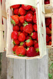 Many fresh red strawberries Stock Images
