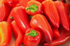 Many fresh red sweet pepper Stock Photos