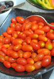 Many fresh red tomatoes Stock Images