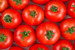 Many fresh red tomatoes background top view Royalty Free Stock Photos