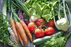 Many fresh spring organic vegetables. On planks gardening concept Royalty Free Stock Photos