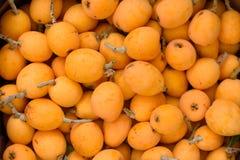 Many fruits of medlar. royalty free stock images