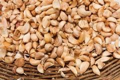 Many of garlic ,food ingredient Stock Image