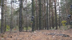 Many gas masks in the forest among the trees. Horizontal pan. Full HD Video stock video footage