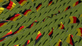 Many German flags View from above. Royalty Free Stock Image