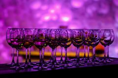 Many glass of wine on a table. Glasses with wine. Filled with half and stand on the holiday table stock photo