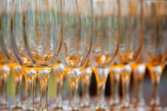 Many glasses as a texture Royalty Free Stock Photo