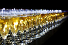 Many glasses of champagne Royalty Free Stock Photo