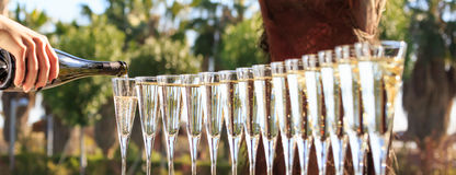 Many glasses of champagne or prosecco near resort pool in a luxu Stock Photo