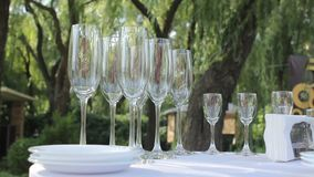 Many glasses of champagne on the table, a glass of champagne close-up, a colorful glass of champagne, a glass of. Many glasses of champagne on the table stock video footage