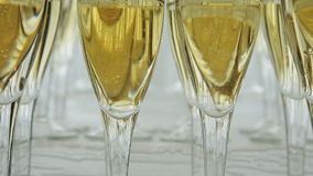 Many glasses of champagne on the table. Glasses of champagne at the reception stock video