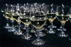 Many glasses of different wine on black bar counter royalty free stock photos