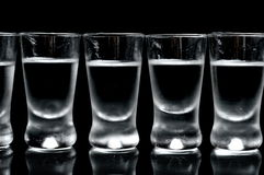 Many glasses of vodka isolated on black background Stock Photos