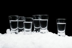 Many glasses of vodka standing on ice on black background Stock Photography